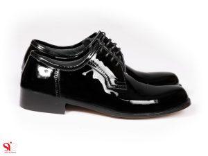 کفش مردانه مدل پالاما ورنی