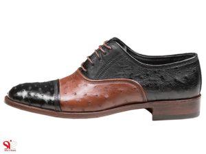 کفش مردانه مدل شایان