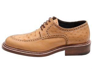 ست کفش و کیف و کمربند چرم مردانه مدل برلیان ویآیپی