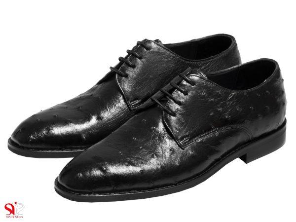 عکس مدل کفش مردانه مجلسی مدل قصر با چرم شترمرغ