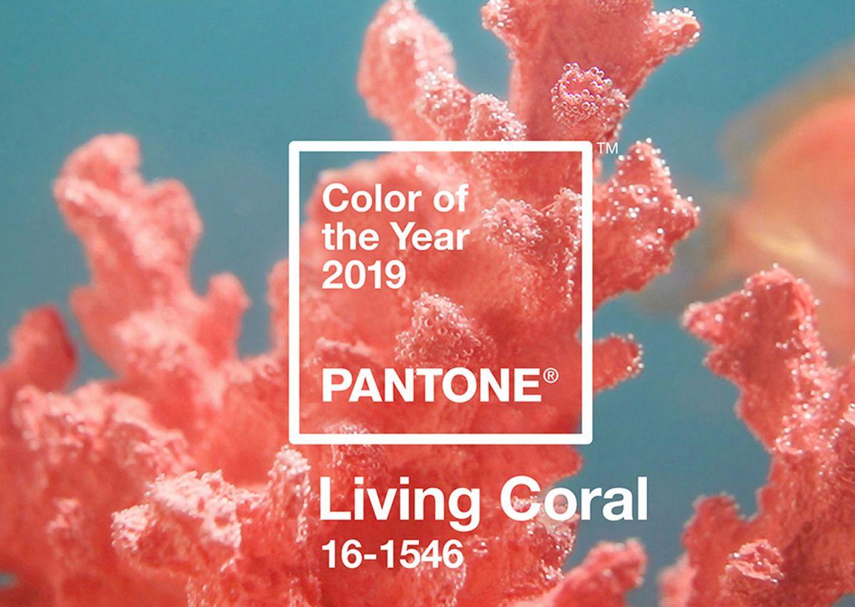 رنگ سال ۲۰۱۹، رنگ مرجانی زنده