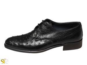 کفش تمام چرم مردانه مدل پاپلی سی سی