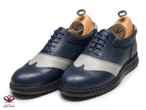 کفش مردانه مدل کاپریس