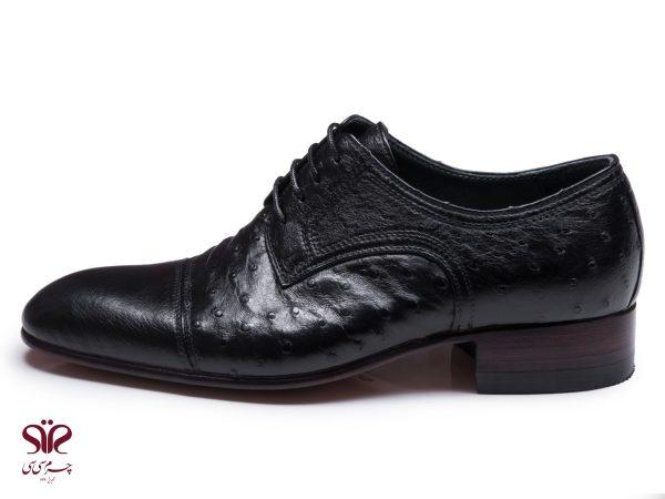 کفش مردانه چرم شترمرغ مدل رامتین