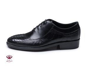 کفش مردانه مدل نیکولا پلاس